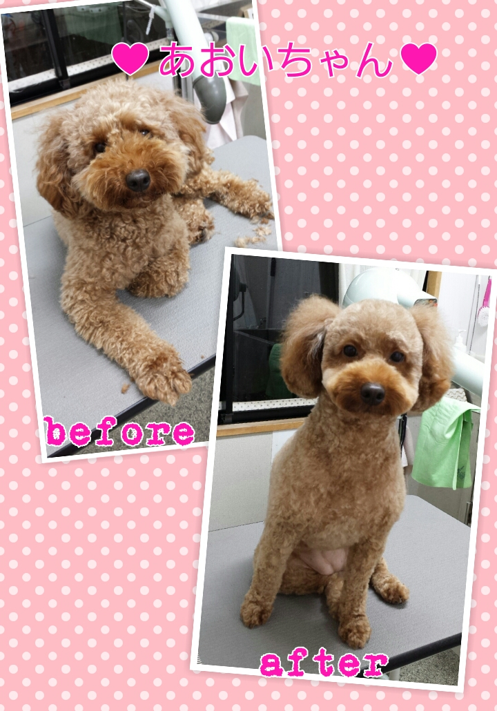 before、after<br />  ♪